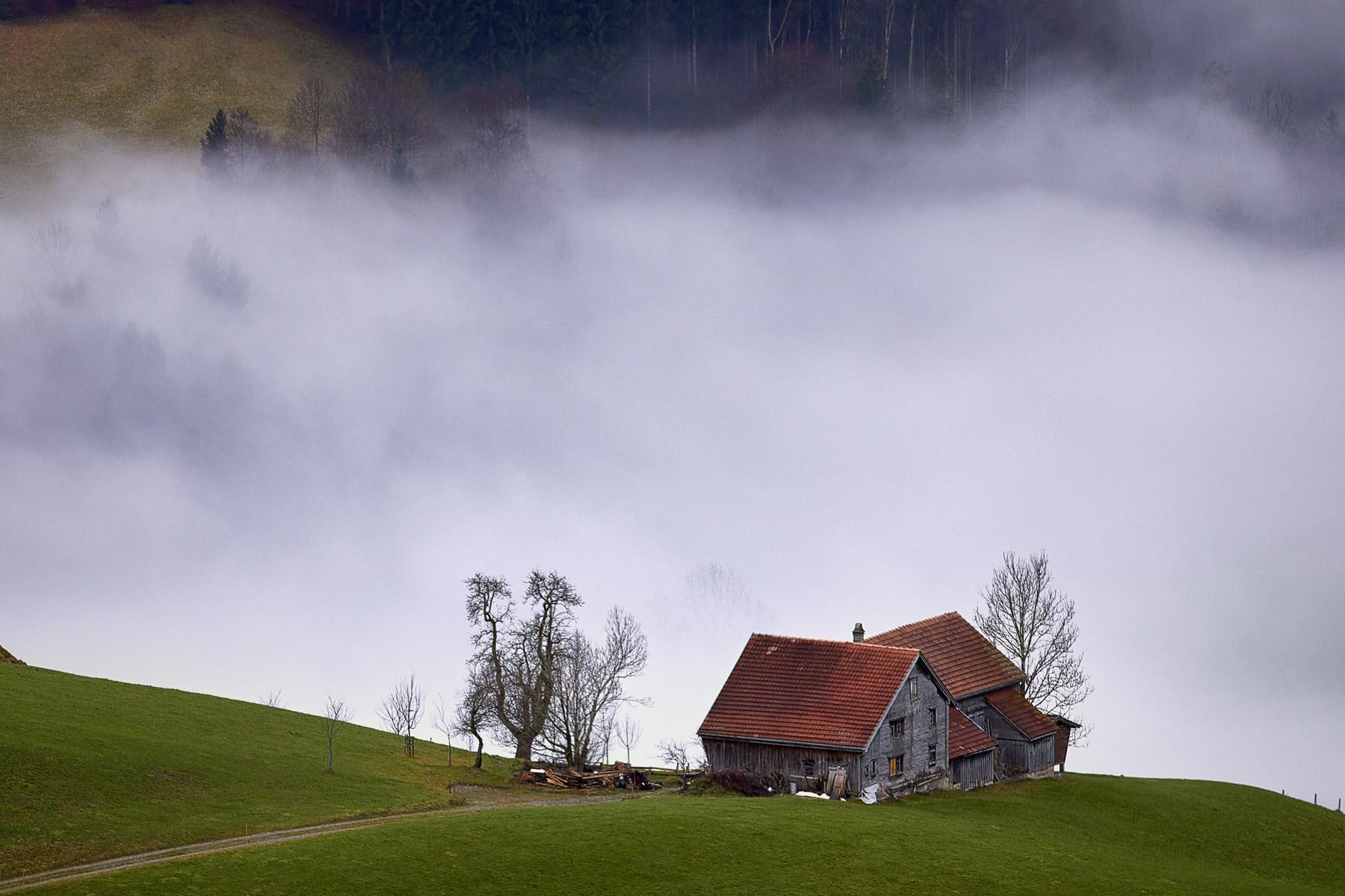 Appenzell Wohnhaus Nebel